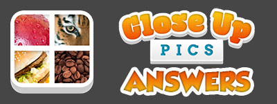 Close Up Pics Answers | Close Ups Cheats